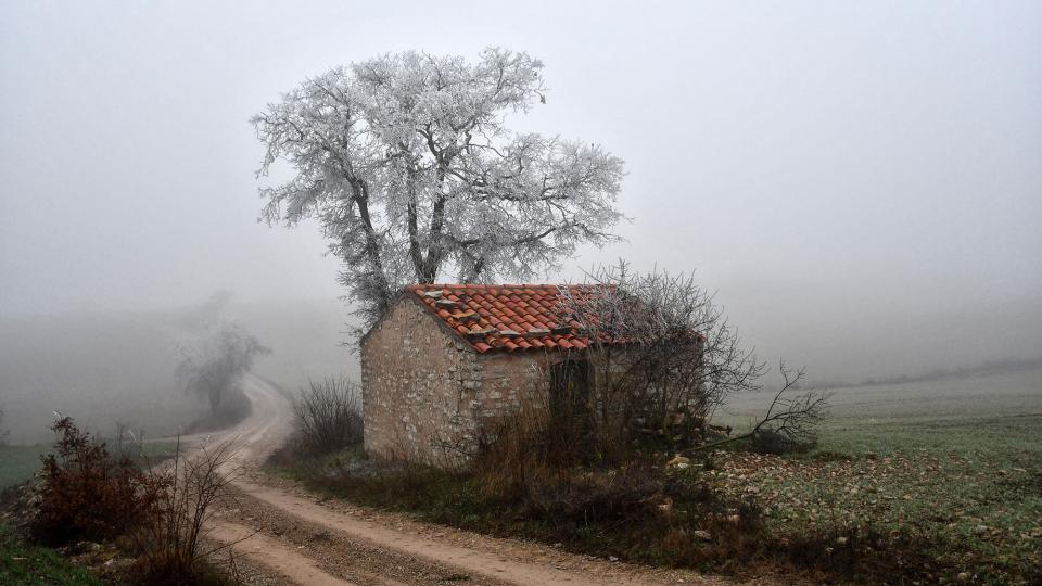03.01.2020 Gebrada  Ferran -  Ramon Sunyer