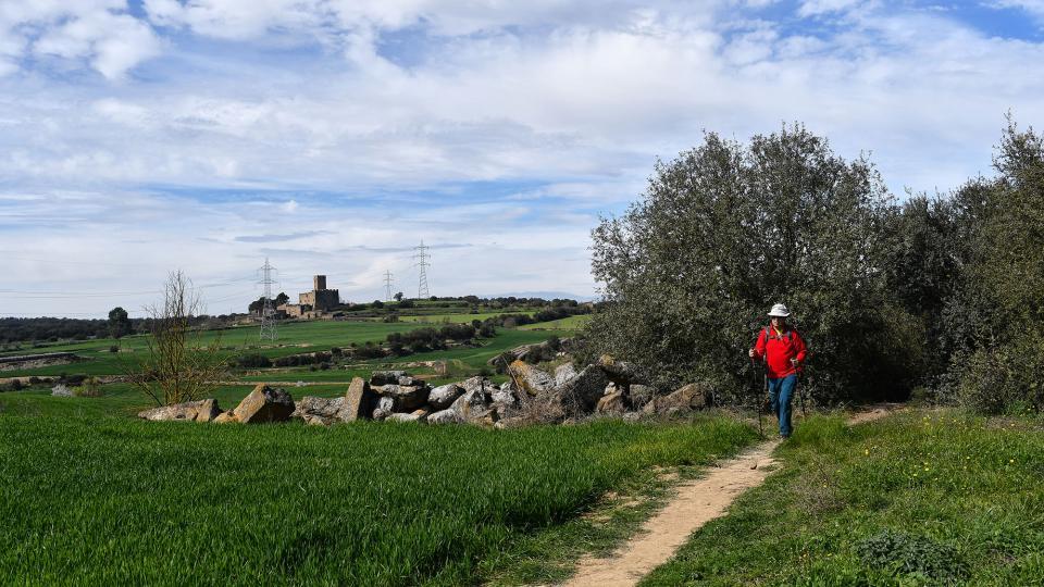 08.03.2020   Florejacs -  Ramon Sunyer