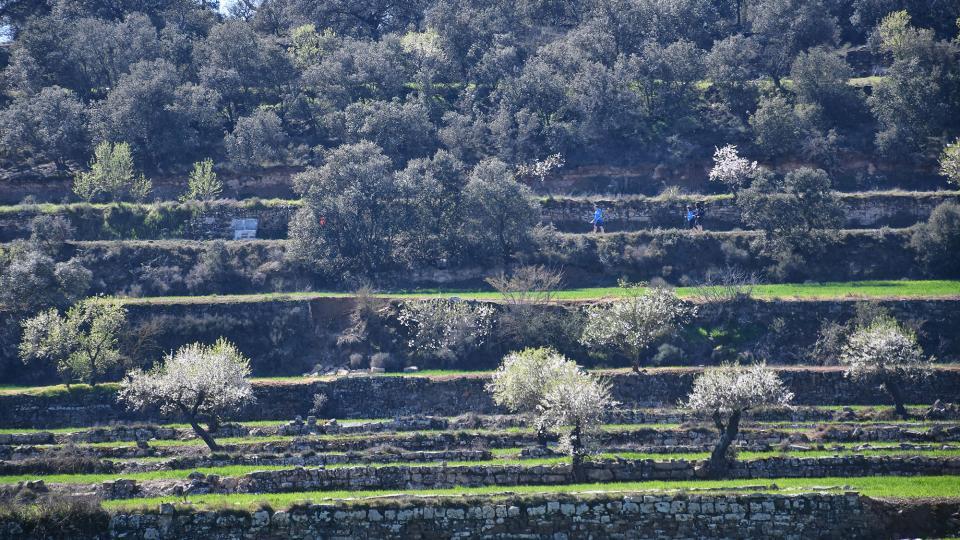 08.03.2020   Guarda-si-venes -  Ramon Sunyer