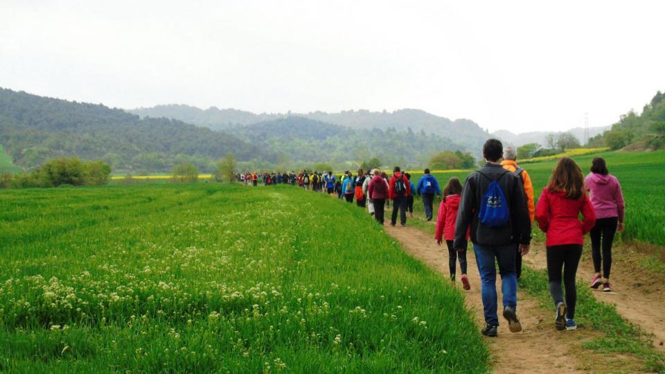 Caminada popular de de Torà Foto: ja vilalta - Torà