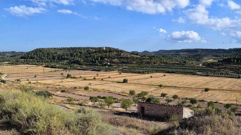 10.08.2019 paisatge  Maldà -  Ramon Sunyer