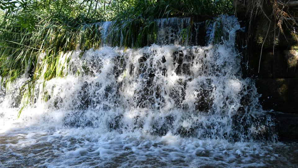 13.06.2020 Peixera d'Ossó de Sió al riu Sió  Ossó de Sió -  Ramon Sunyer