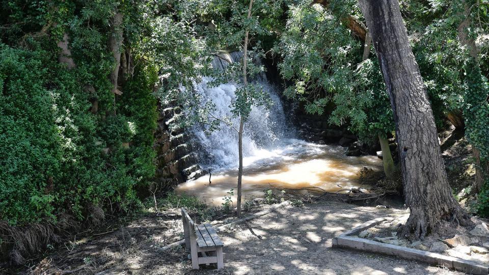 21.06.2020 Font i peixera de la Puda al riu Sió  Concabella -  Ramon Sunyer