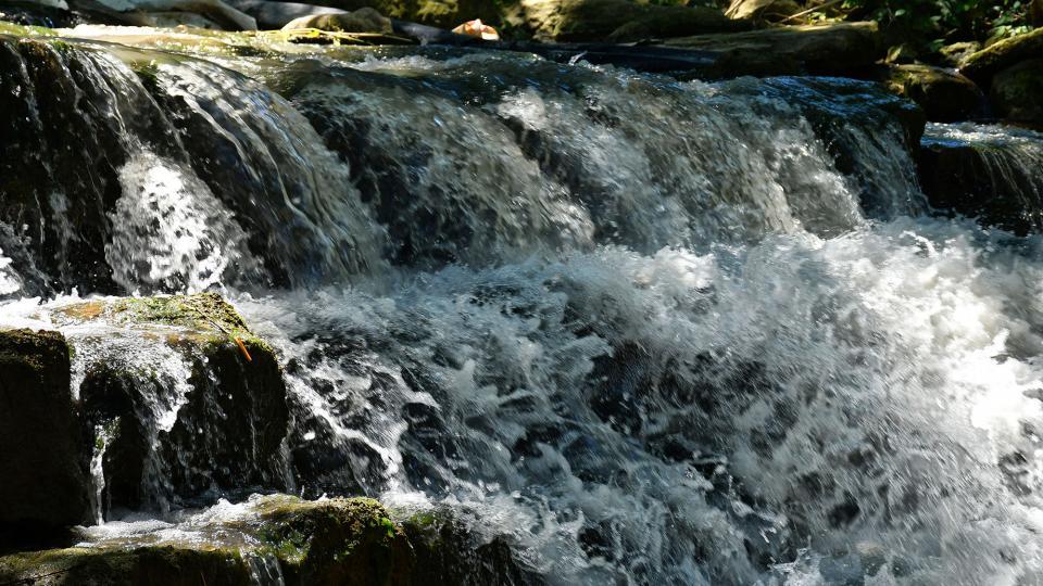 05.07.2020 Peixera de Ratera al riu Sió  Ratera -  Ramon Sunyer