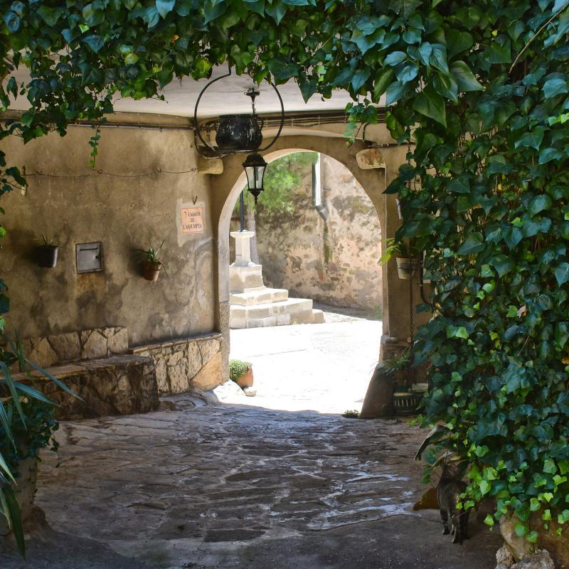 05.07.2020 vila closa  Ratera -  Ramon Sunyer