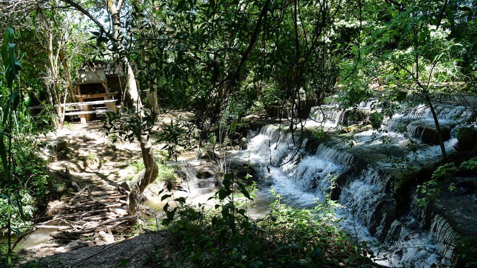 05.07.2020 Peixera d'Hostafrancs al riu Sió  Hostafrancs -  Ramon Sunyer