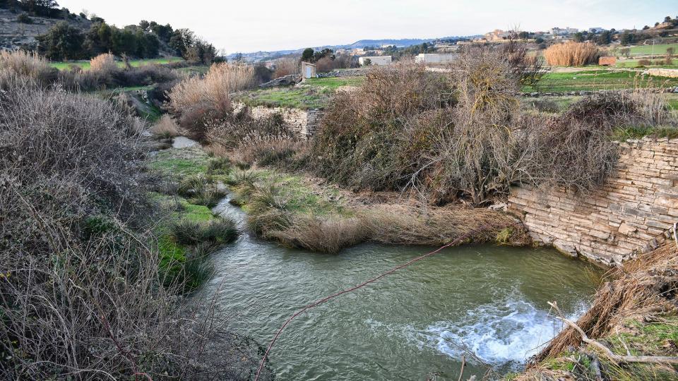 01.02.2020 Peixera al riu Ondara  Pallerols -  Ramon Sunyer