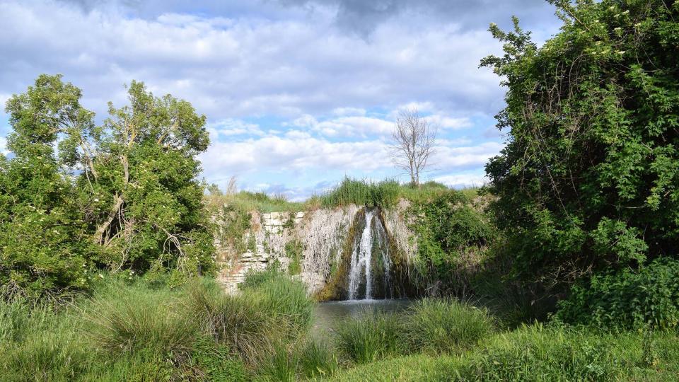 18.05.2019 Peixera al riu Ondara  Pallerols -  Ramon Sunyer