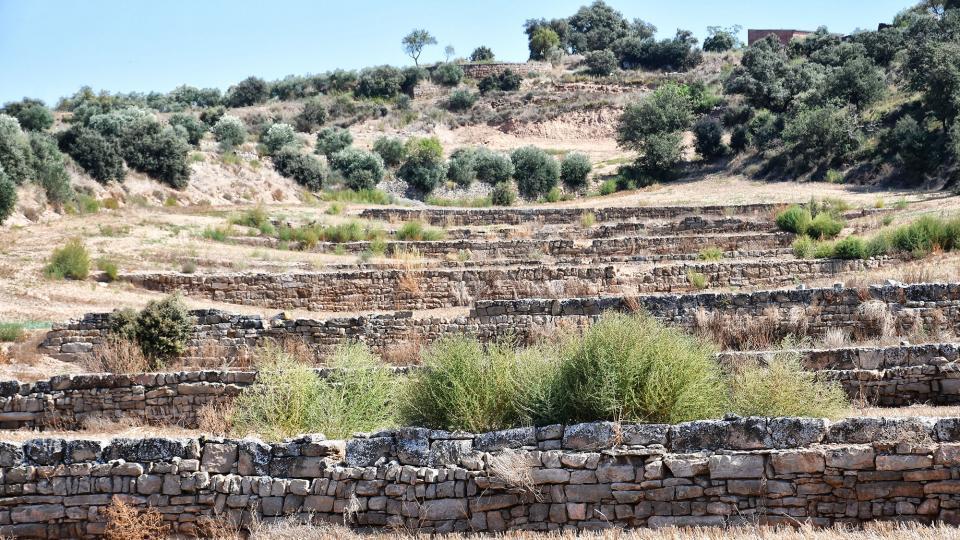 parets de pedra a Selvanera -