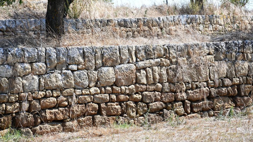 parets de pedra a Mas Ramon -