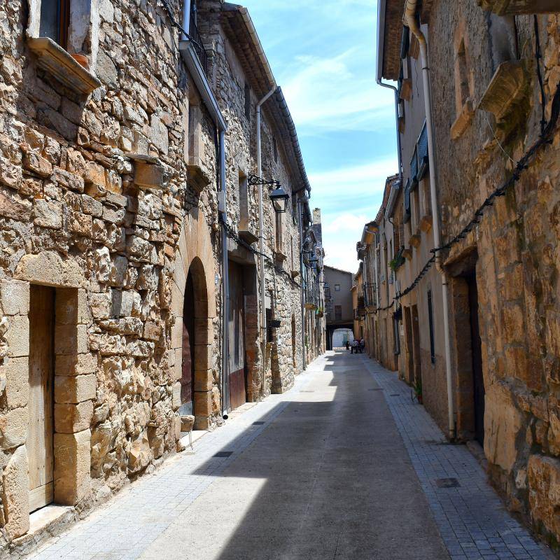 04.07.2021 carrer  El Mas de Bondia -  Ramon Sunyer