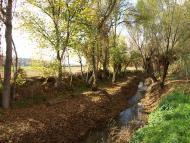 Sedó: 'Això dura fins que arribo a la ribera del riu Sió, allargada i plana'  Giliet de Florejacs