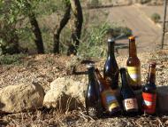 Guissona: cerveses artesanes de la Segarreta i la Vella Caravana  Camins de Sikarra