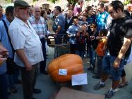 Antonio Prat, de Cervera, amb la carbassa guanyadora, de 96 kg