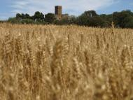 Florejacs: Castell de les Sitges  Camins de Sikarra