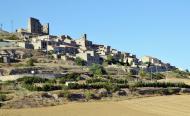 Savallà del Comtat: Vista del poble  Albert