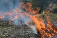 Comença la prohibició de fer foc en zones forestals