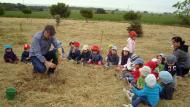 Sant Guim de Freixenet: Els escolars realitzen una plantada d'arbres  CC Segarra