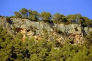 Pontils: Coves de Sant Magí de la Brufaganya  Àngela Llop