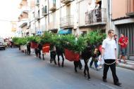 Cervera: Arribada de l'aigua per Sant Magí  Ramon Prats