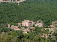 Llanera: Un gran castell del s. XI, convertit en època moderna en casal senyorial. Actualment es troba pràcticament en runes  Isidre Blanc