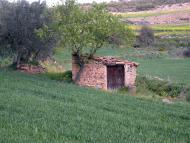 Castellfollit de Riubregós: cabana  Ramon Sunyer