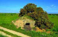 Els Plans de Sió: cabanes de volta  Àngela Llop