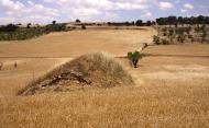 Les Oluges: cabana de volta  Ramon Sunyer