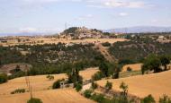 Alta-riba: Vista del poble i  vall del torrent de Malacara des de Santa Fe  Ramon Sunyer