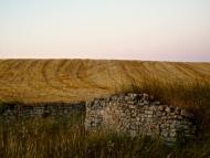 Santa Coloma de Queralt: Paisatge  Tribus de la Segarra