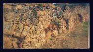 Torà: aqüeducte dels frares, canalitzava l'aigua al convent  Ramon Sunyer