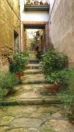 Castellfollit de Riubregós: detall carrer  Ramon Sunyer