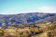 Sant Serni: Vista de la torre de Vallferosa  Ramon Sunyer