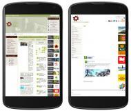 Les webs del Consell Comarcal o Turisme Segarra no estan adaptades a mòbils