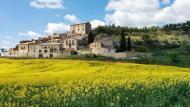 Estaràs: La primavera crea postals pròpies  Ramon Sunyer