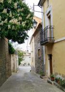 Gra: detall carrer  Ramon Sunyer
