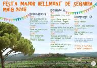 cartell Festa Major