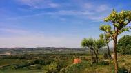 Bellmunt de Segarra: paisatge de la vall d'ondara  Ramon Sunyer