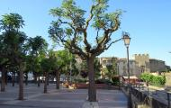 Guissona: Plaça del Vell Pla  Turisme Guissona