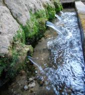 Rocamora i Sant Magí de la Brufaganya: Fonts de sant Magí  Ramon Sunyer