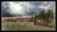 Viver de Segarra: vista general  Ramon Sunyer