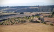 Granyanella: Piasatge  Ramon Sunyer
