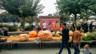 Sedó: Molts concursants  Ramon Sunyer