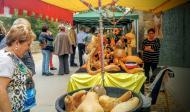 Sedó: parada amb carbasses  Ramon Sunyer