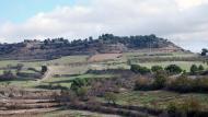Sant Antolí i Vilanova: paisatge  Ramon Sunyer