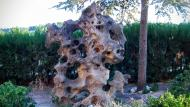 Montoliu de Segarra: parc  Ramon Sunyer