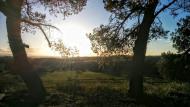 Florejacs: paisatge  Ramon Sunyer
