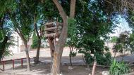 Montfar: jardinet  Ramon Sunyer