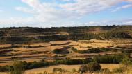 Montornès de Segarra: paisatge  Ramon Sunyer
