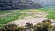La Móra: sembrats  Ramon Sunyer